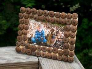acorn-picture-frame-craft-photo-475x357-aformaro-img-0263_476x357