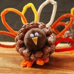 turkey_pinecone