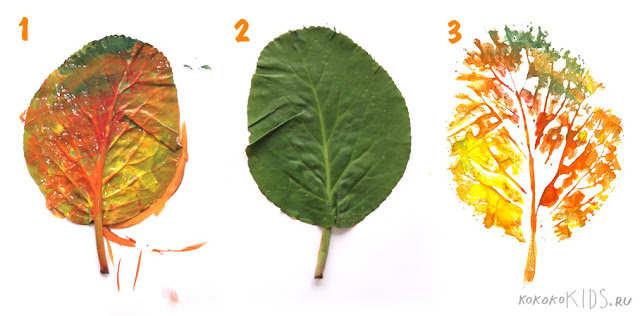 Minunatele frunze de toamnă